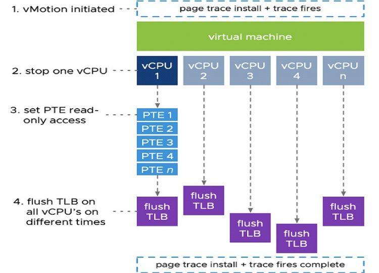 vSphere 7 Vmware vMotion con vCPU
